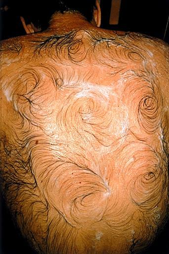 gross-back-hair-artistry